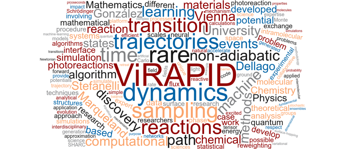 ViRAPID wordcloud